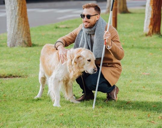 הנגשת האתר לאנשים עיוורים